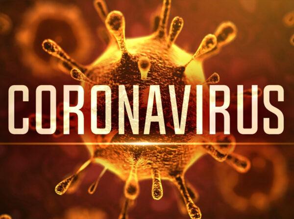 Coronavirus virus body
